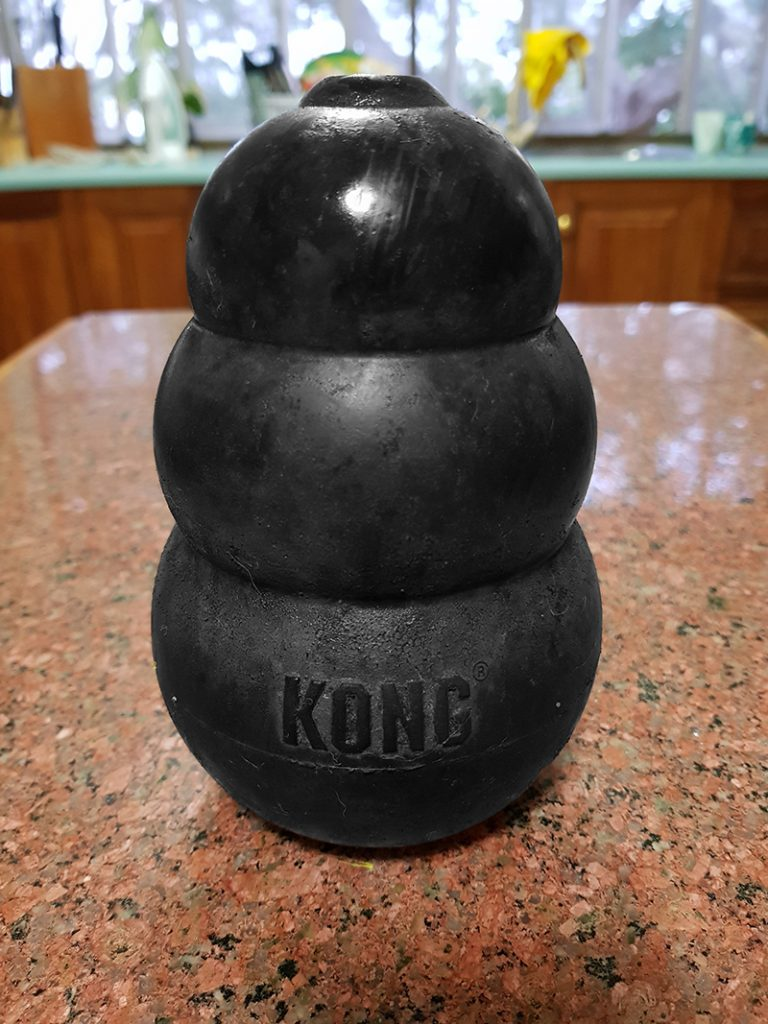 Max's Kong Toy